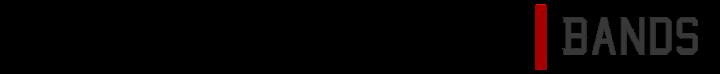 2016 Logo Long